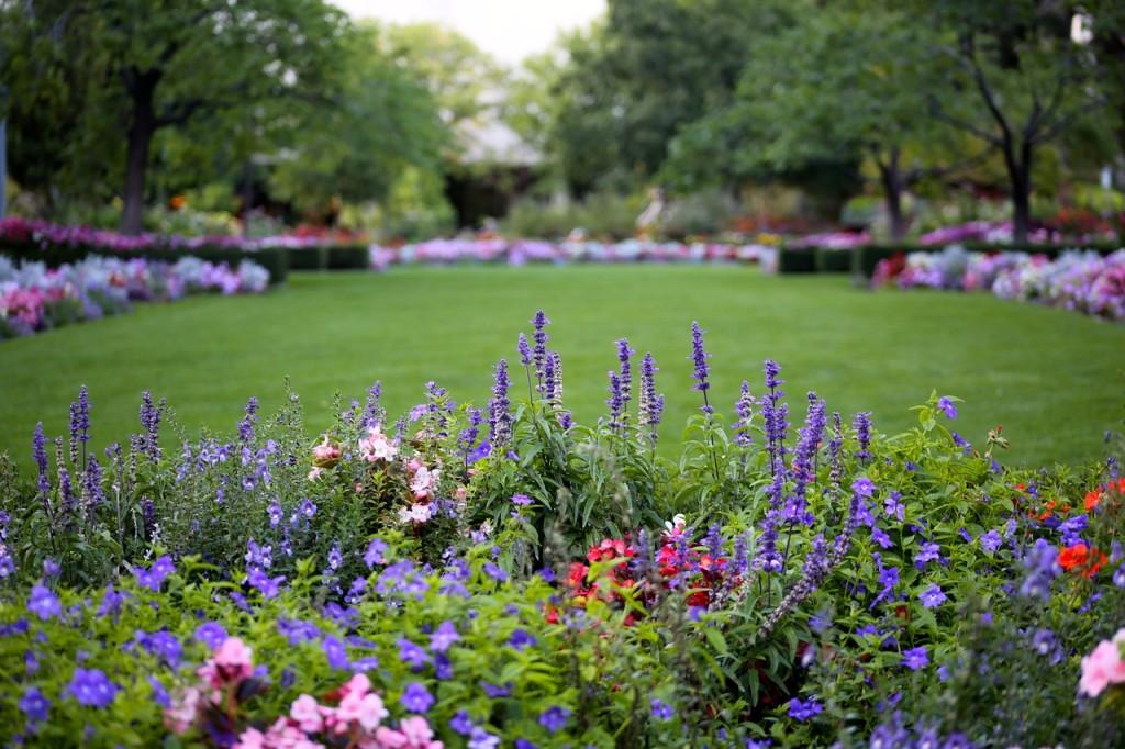 High Quality The Fertile Garden