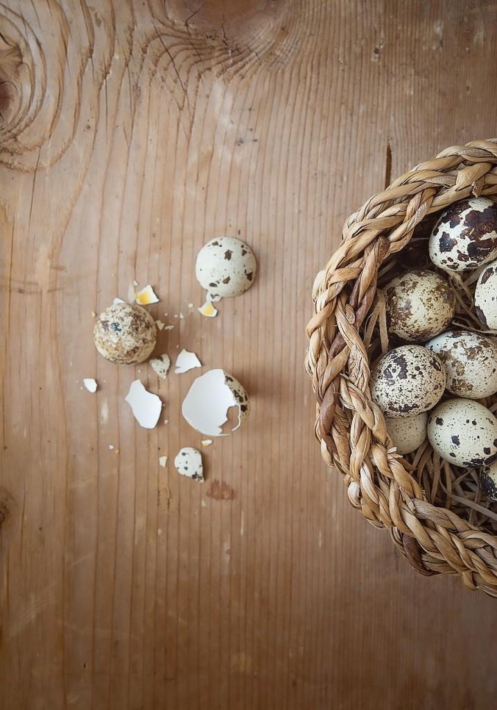 egg-1235576_1280