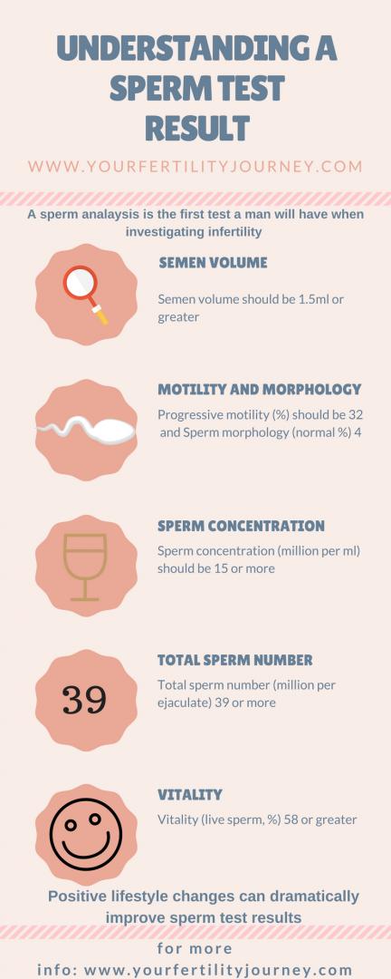 sperm How long fertile is