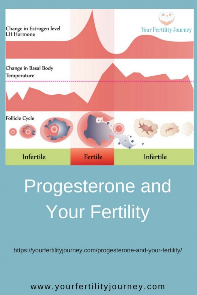 Progesterone and your Fertility - the symptoms of progesterone deficiency. Do you have it?